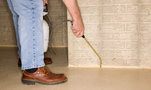 FirstTime Pest Solutions: $49 for Full Interior & Exterior Preventative Pest-Control Treatment from FirstTime Pest Solutions ($119 Value)