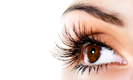 Eyelash Extensions with Optional Fill-In or Fill-In and Brow Wax from Anastasia at True Salon (Up to 57% Off)