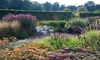 Walled Garden Entry For Two