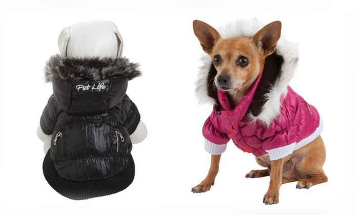 Metallic Dog Parkas: Metallic Dog Parkas. Multiple Styles Available. Free Shipping and Returns.
