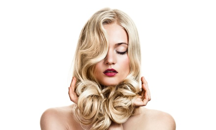 Haircut and Style with Optional Partial or Full Highlights with a Senior Stylist at Echo Salon (Up to  73% Off)