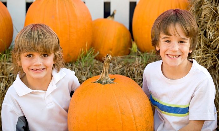 Dave's Pumpkin Patch - West Sacramento: $20 for a Cornival and Corn-Maze for Two Adults and Two Children at Dave's Pumpkin Patch ($40 Value)
