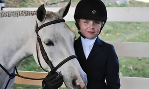 Fox Hollow Farm: Two or Four One-Hour Private Horseback-Riding Lessons at Fox Hollow Farm (Up to 45% Off)