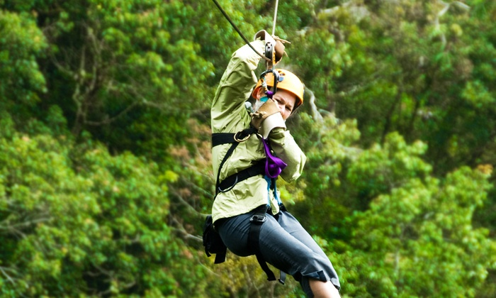The Adventure Park at Frankenmuth - Frankenmuth: Ziplining and Rope-Course Outing for One, Two, or Four at The Adventure Park at Frankenmuth (Up to 64% Off)