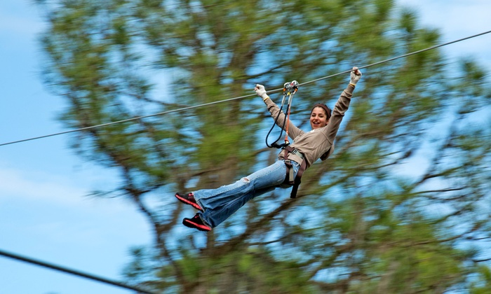 TreeUmph! Adventure Course - Bradenton: Two or Four Adult or Junior Entries to the Tree Umph! Adventure Course (Up to 40% Off)