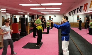 Villari's Martial Arts Center: $169 for Three Months of Unlimited Shaolin Kempo Karate Lessons at Villari's Martial Arts Center ($342 Value)