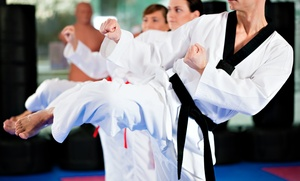 Kim's Black Belt Academy: One or Two Months of Martial Arts Classes with White Uniform at Kim's Black Belt Academy (79% Off)