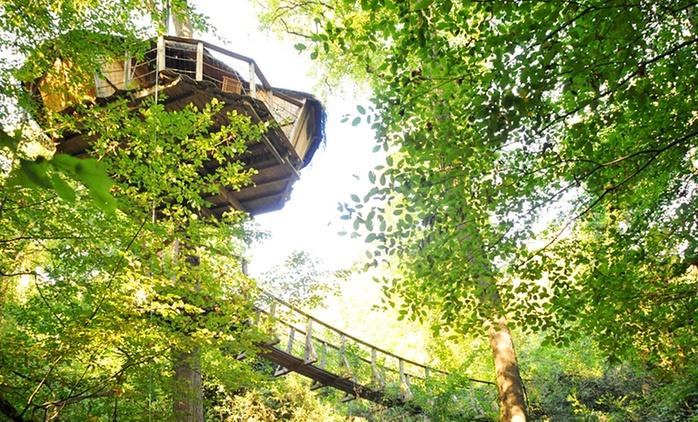 Poitiers : 1 nuit pour 2 personnes en cabane dans les arbres près de la vallée des singes