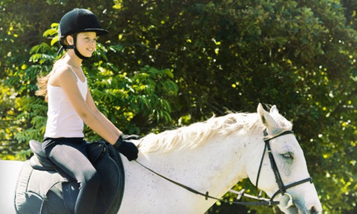 Hoofbeats Riding School - Petaluma: One or Four 60-Minute Private Horseback-Riding Lessons at Hoofbeats Riding School (Up to 55% Off)