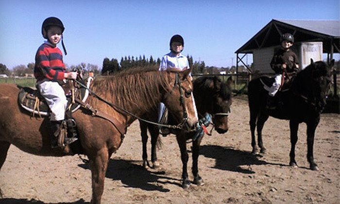 Epona Farms - Galt: One or Three 90-Minute Introductory Horseback-Riding Lessons at Epona Farms (Up to 51% Off)
