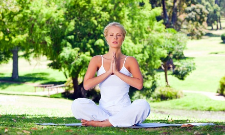 Teutoburger Wald: 5 Yoga-Tage für 1 oder 2 Pers. mit veg. Bio-Vollwertbuffets und Yogastunden bei Yoga Vidya