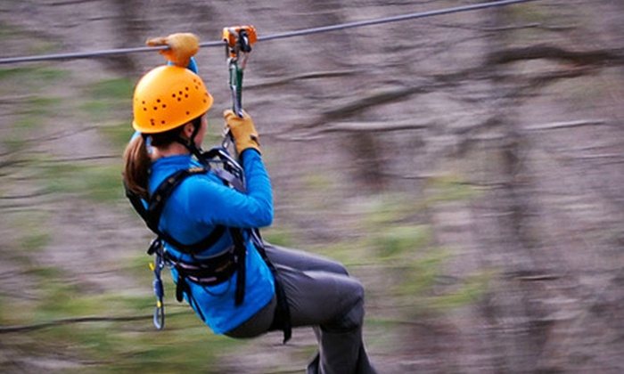 French Broad Ziplines - Marshall: Zipline Canopy Tour for One, Two, or Four from French Broad Rafting Expeditions (51% Off)
