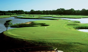 Up to 90% Off 2020 Riverside VIP Golf Pass at Riverside Golf Club