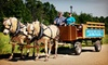 Broken Tree Horse and Harness, Inc. - Bradford: Seasonal Horse-Drawn Wagon or Sleigh Ride with Hot Beverages for Two or Four at Broken Tree Horse & Harness (53% Off)