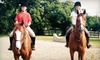 Creekside Farm - Hawthorn Woods: Two Private Horseback-Riding Lessons, or Sunday Pony Club for a Child at Creekside Farm (Half Off)