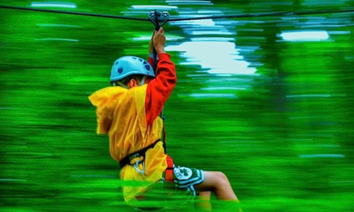 Indian Point Zipline - Indian Point: AdrenaLINE Zipline Tour for One, Two, or Four from Indian Point Zipline (Up to 51% Off)