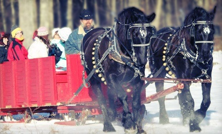 Group Horse-Drawn Sleigh or Wagon Ride for Two or Four or Private Ride for Four at Cornerstone Ranch (Up to 54% Off)
