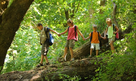 $79 for One Week of Kid's Traveling Summer Day Camp at Hope 7 Community Center ($165 Value)