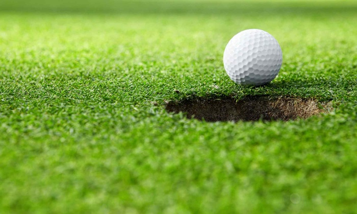 Golf Pro Michael Charles - Eastmoreland: $60.99 for One 60-Minute or Two 30-Minute Golf Lessons with Golf Pro Michael Charles ($100 Value)