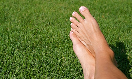 Four Laser Toenail-Fungus Treatments for One or Both Feet by Dr. Jay S. Berenter D.P.M. (50% Off)