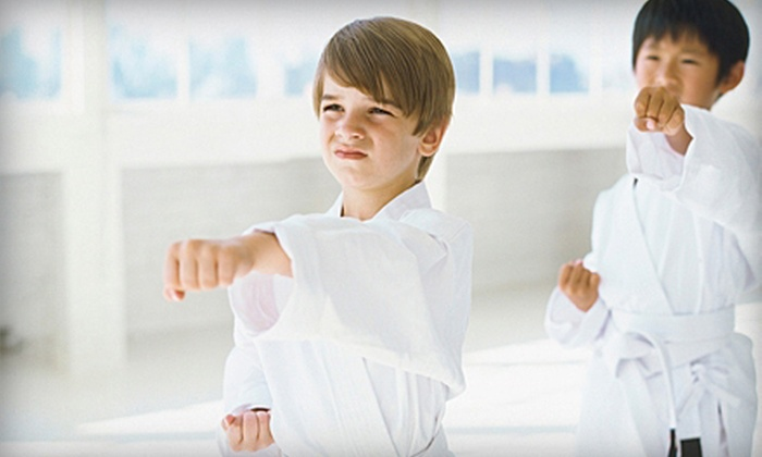 Tien Lung Taekwon-Do Club - South location: Two Months of Beginner Tae Kwon Do Classes at Tien Lung Taekwon-Do Club (Up to 85% Off). 24 Options Available.