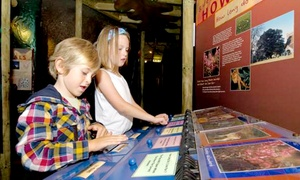 Conkers: Family Ticket for Four Inc Half Term to Conkers (40% Off)