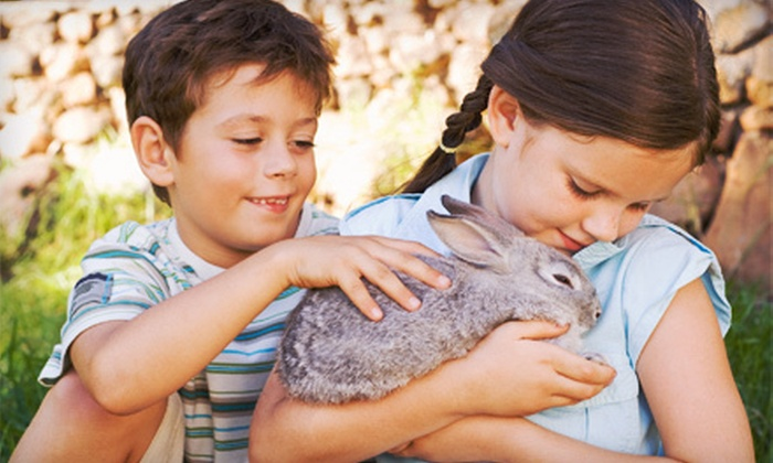 The Gentle Zoo - Forney: Petting-Zoo Visit for Two, Four, or Six at The Gentle Zoo (Up to Half Off)