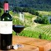 Up to 58% Off Wine Tour for One, Two, or Four