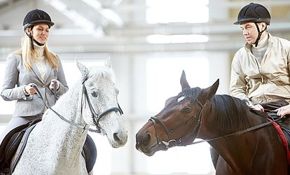 image for One Hour-Long Horse Riding Lesson at The Cabin Equestrian Centre (52% Off)