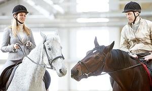 PONY CLUB IL GIROTONDO: Corso di equitazione di 3 o 5 lezioni da 60 minuti con monta inglese al Pony Club Il Girotondo (sconto fino a 70%)
