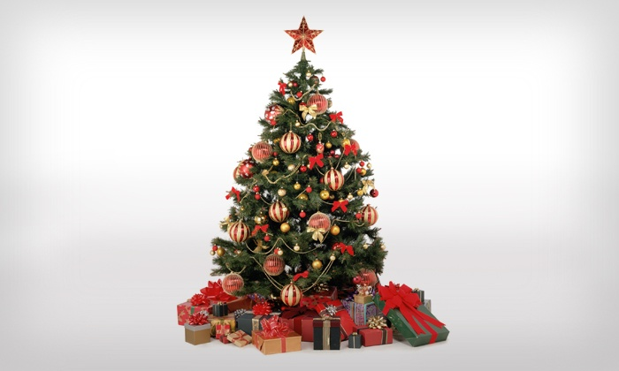Little Elf's Christmas Trees - Multiple Locations: Christmas Trees and Accessories (40% Off)