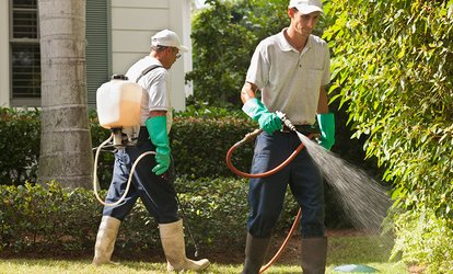 image for Two or Five Mosquito and Tick Abatement Treatments for Up to Half Acre from Mosquito Squad (Up to 75% Off)