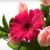 59% Off 12 Flower Bouquets in St. Peters
