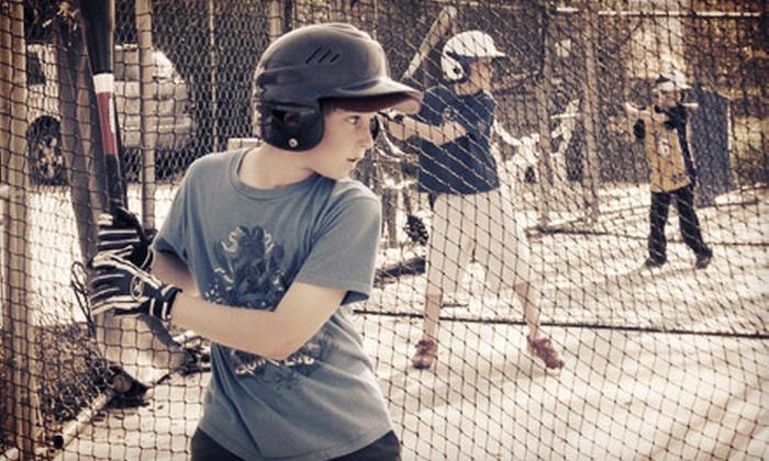 All-Star Baseball School - South Pasadena: Batting-Cage Session or Private Baseball Lessons at All-Star Baseball School (Up to 63% Off). Three Options Available.