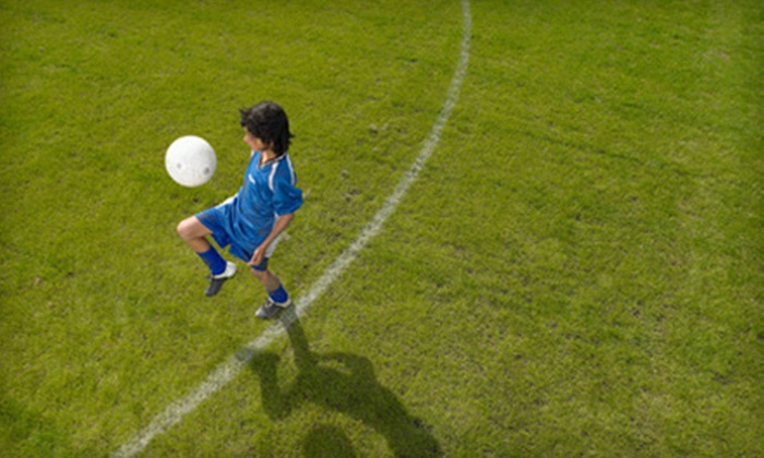 Florida Crushers - Tradewinds Park: $39 for a Five-Day Soccer Camp for Ages 8–16 at Florida Crushers ($80 Value)