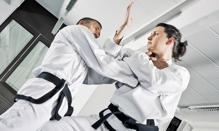 YAMABUSHI JUJUTSU AIKIJUTSU RYU - Bronxwood: $72 for $130 Worth of Services at Yamabushi Jujutsu-Aikijutsu Ryu