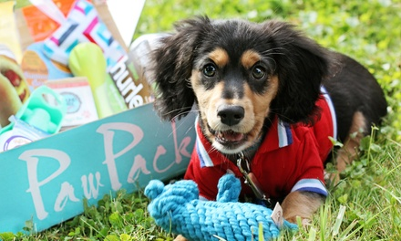 1-, 3-, 6-, or 12-Month Pet Gift Box Subscription for a Cat or Dog from PawPack (Up to 33% Off)