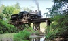Mt Rainier Railroad and Logging Museum - Elbe: $12 for a Regular Steam-Engine Excursion for One from Mt. Rainier Scenic Railroad (Up to $24 Value)