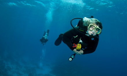 Confined Water Scuba Course for One or Two or International ScubaCertification Course at DiveAqua (Up to 59% Off