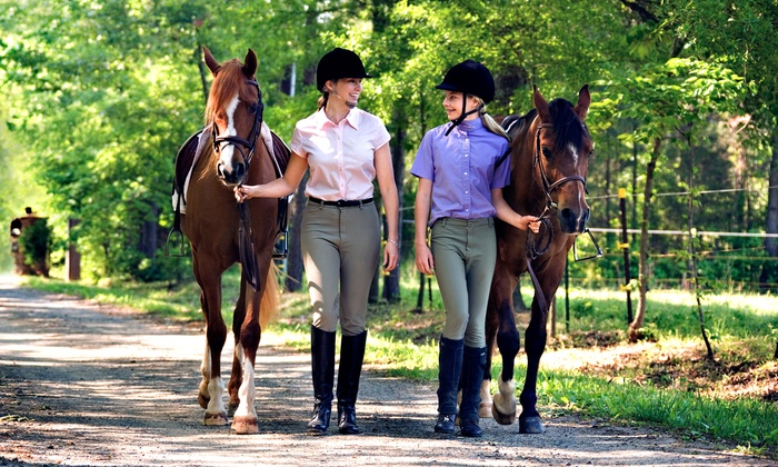 Sonora Creek - Lathemtown: Two or Four 30-Minute Horseback-Riding Lessons at Sonora Creek (44% Off)
