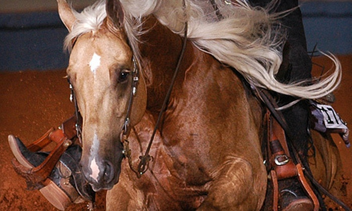 National Reining Horse Association Cowtown Classic  - Cultural District: National Reining Horse Association Cowtown Classic at Will Rogers Memorial Center on August 17 and 18 (Up to 55% Off)