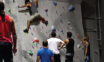Two Visits and Classes, Two One-Month Memberships, or a Birthday Party at Aesthetic Climbing Gym (Up to 68% Off)