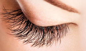 Lash Studio One: $79 for One Complete Set of Eyelash Extensions at Lash Studio One ($250 Value)