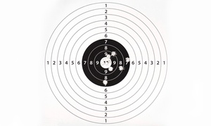 Practical Combat Group: Concealed-Carry Course for One or Handgun Course for Two or Four from Practical Combat Group (Up to 57% Off)