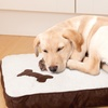 Orthopedic Soft Memory Foam Pet Bed