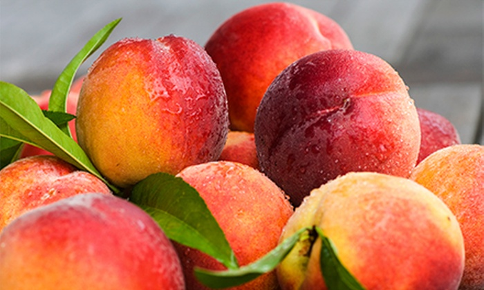 ProFarm Produce - Multiple Locations: 10-Pound Box of Peaches, Nectarines, Apples, or Pears at ProFarm Produce (Up to Half Off)
