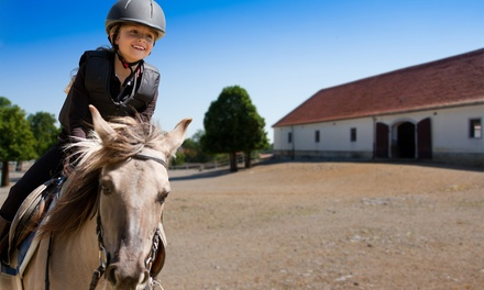 One, Three, or Six 60-Minute Private Horseback-Riding Lessons at Blossom Hill Ranch (Up to 51% Off)