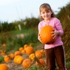 50% Off at Pipe Creek Pumpkin Patch