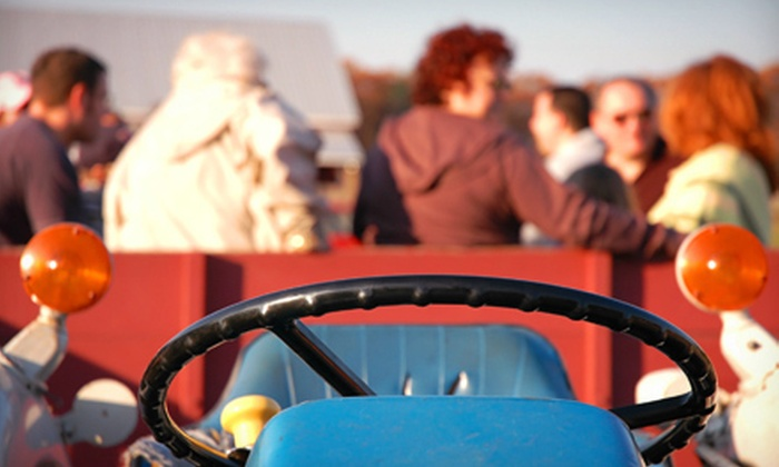 Wildwood Stables - Crossville: Hayride with Drinks and S'mores for Two, Four, or Six from Wildwood Stables (Up to 58% Off)