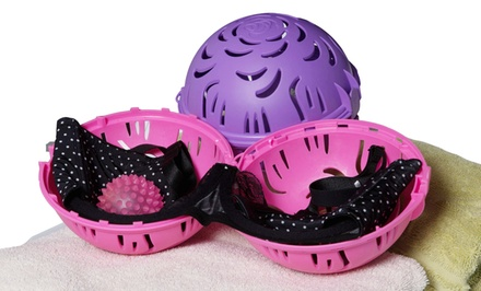 groupon daily deal - 2-Pack of Bra Maid Delicates Cleaning Kits with 2 Bra Balls and 2 Laundry Bags in Purple or Pink. Free Returns.